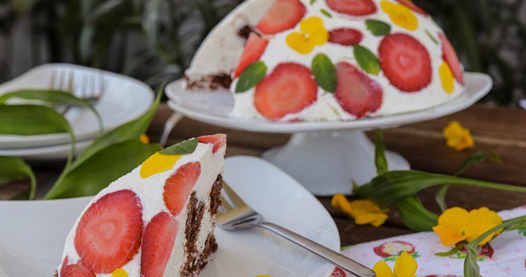 Herbarij tortica